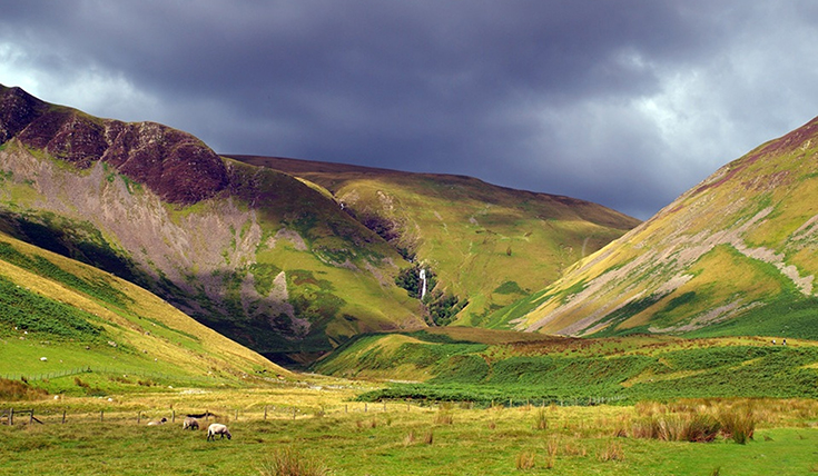 Landscape view with hills and sheep